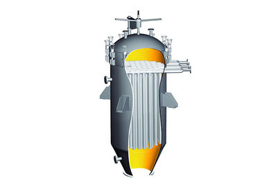 Vertical Self Cleaning Candle Filter Purification , Carbon Candle Filter